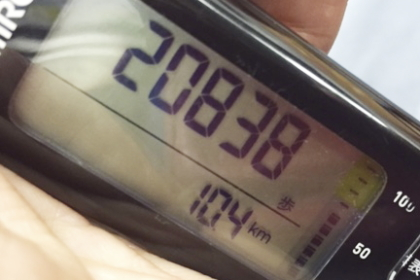 100 (12)
