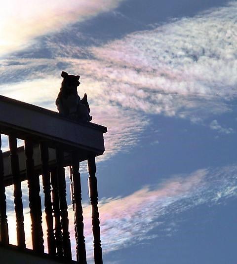 彩雲とシーサー(2)