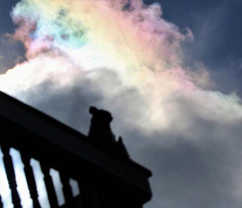 彩雲とシーサー(6)