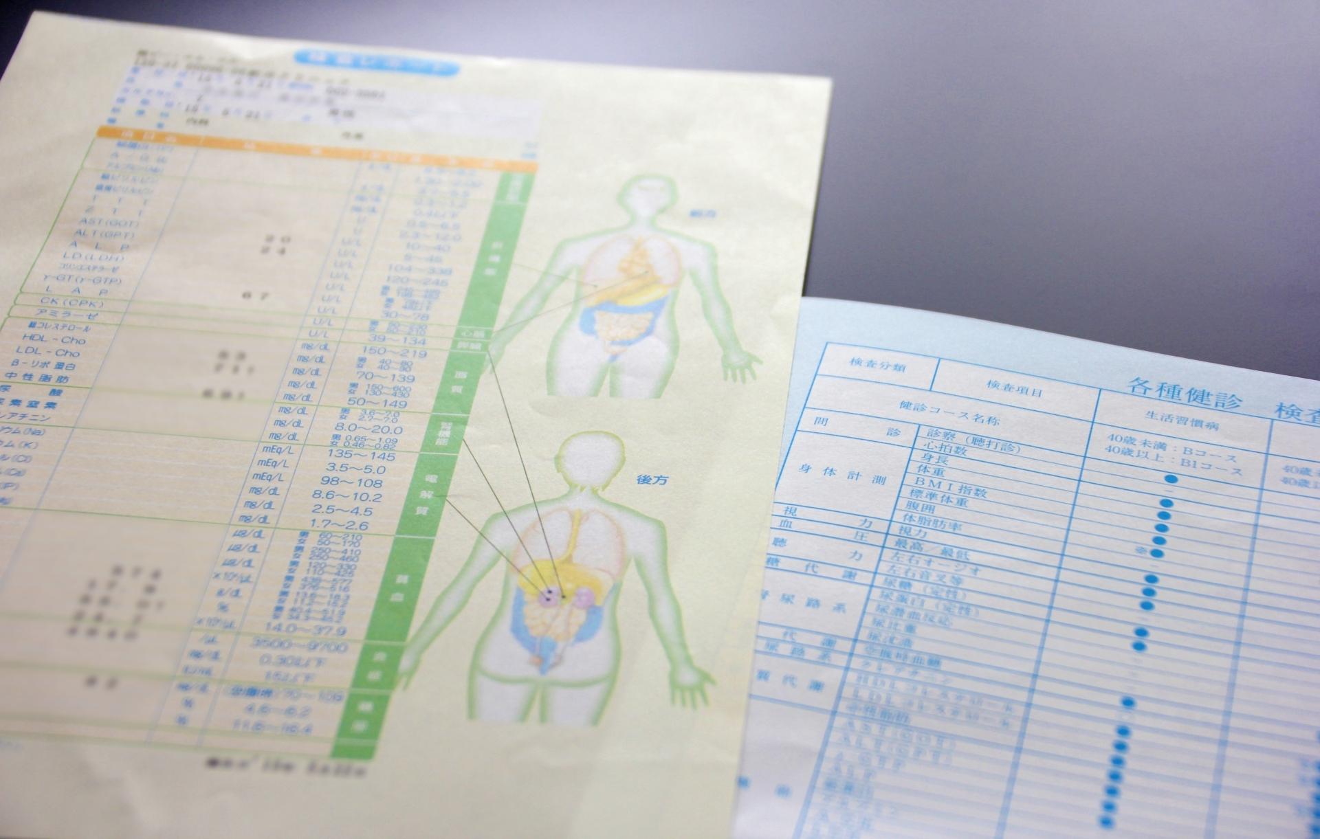 1日1食と超音波検査結果の変化