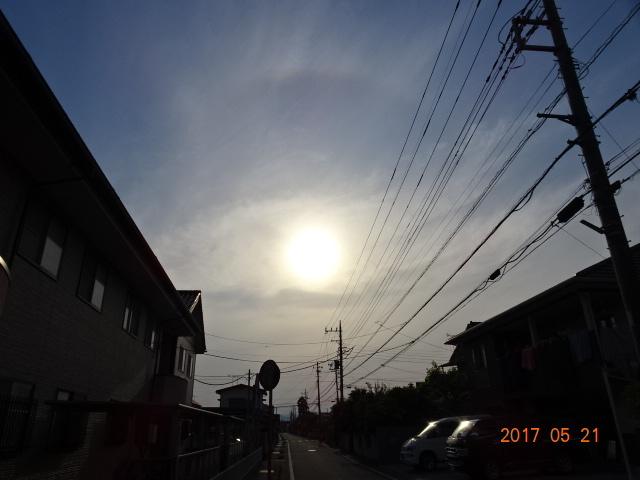 2017_05210070.jpg