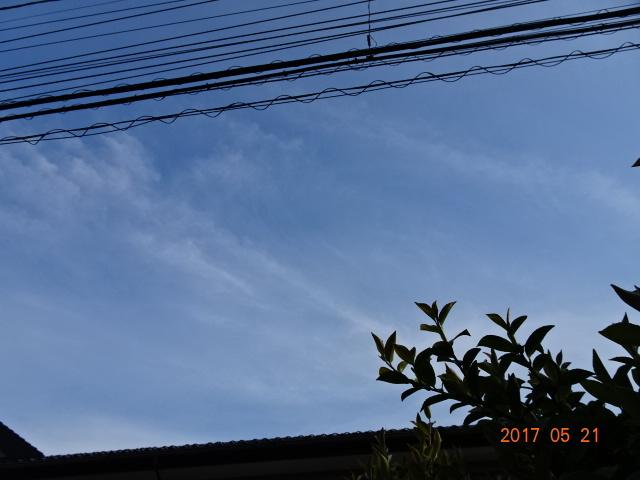 2017_05210071.jpg