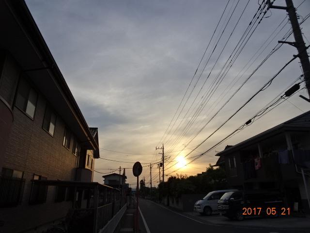 2017_05210074.jpg