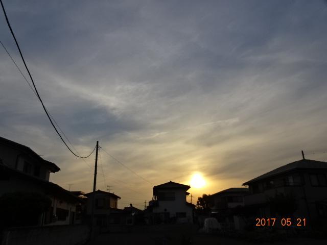 2017_05210075.jpg