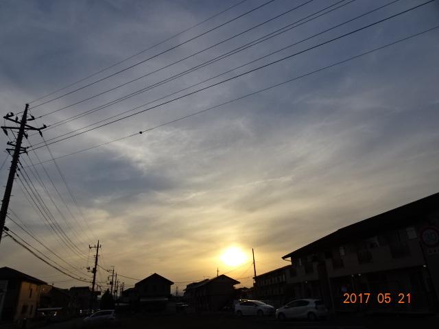 2017_05210076.jpg
