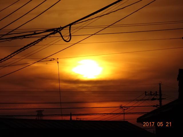 2017_05210102.jpg