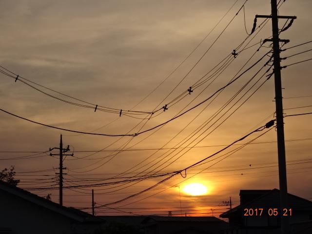 2017_05210103.jpg