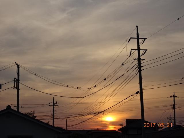 2017_05210106.jpg
