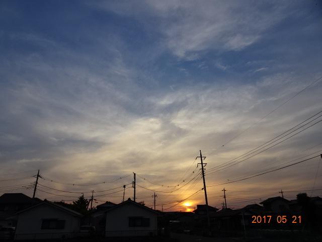 2017_05210107.jpg