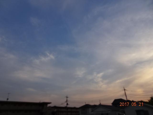 2017_05210119.jpg