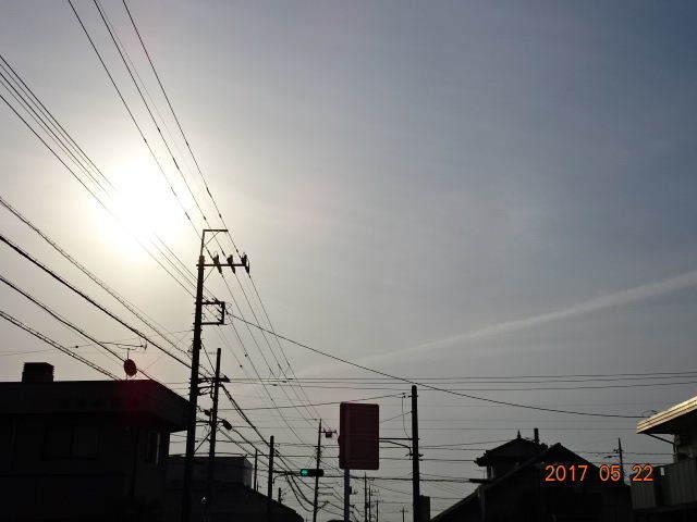 2017_05220027.jpg