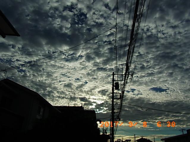 2017_09080003.jpg