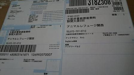 DSC_3858.jpg