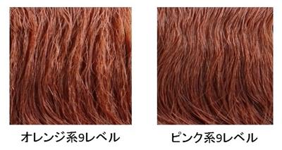 スライド1-crop