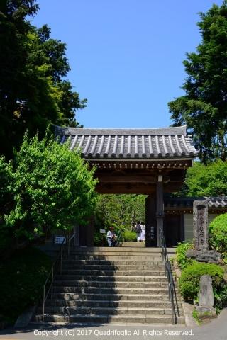 2017年 2度目の鎌倉へ