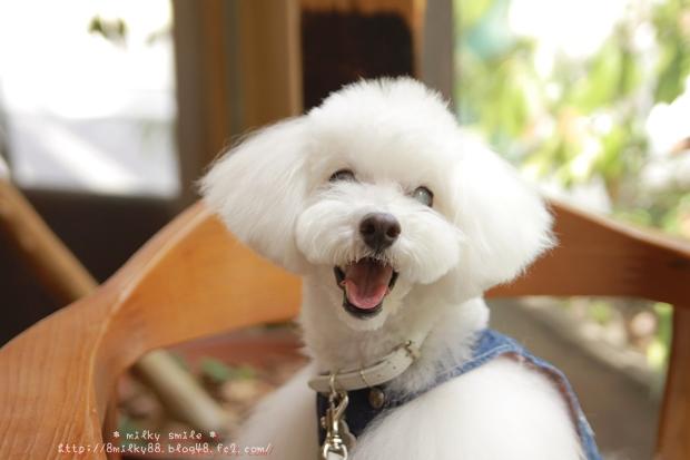 * milky smile *