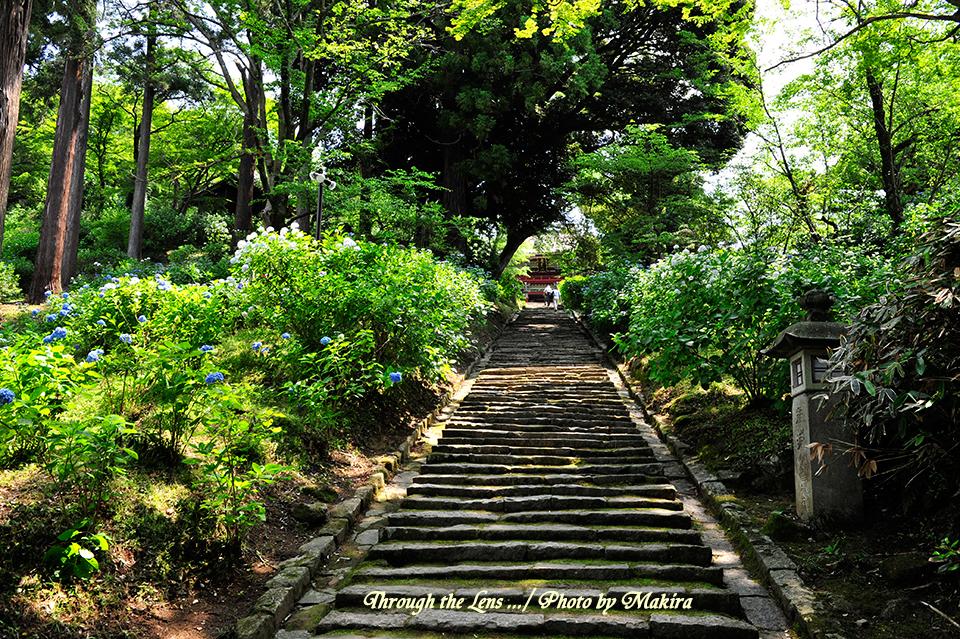 薬井門から仁王門への磴道1