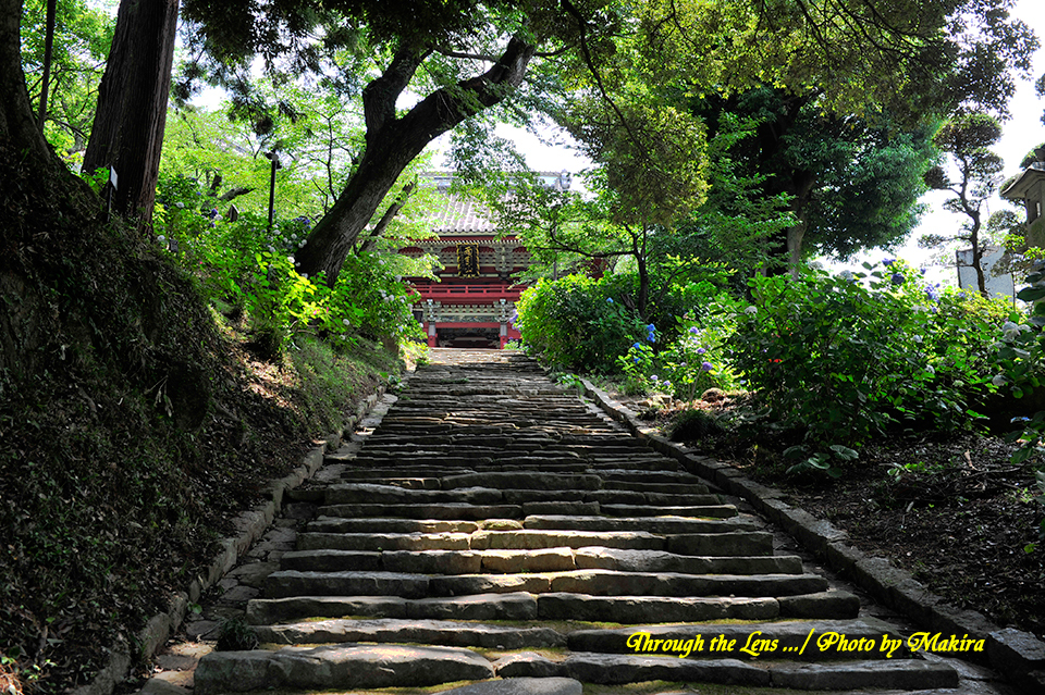 薬井門から仁王門への磴道3