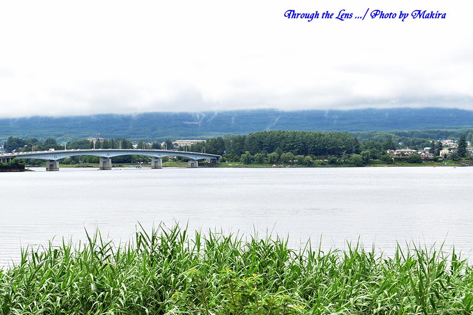 河口湖56D1