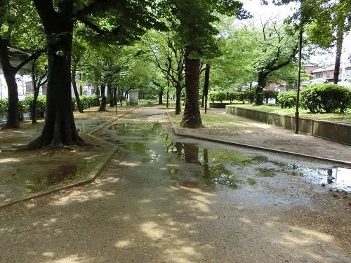 CIMG5256 近所の公園