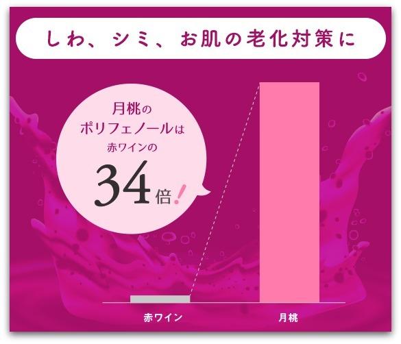 美シーサー 月桃のポリフェノール量