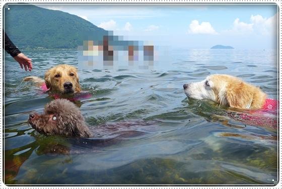 2017,7,22琵琶湖4