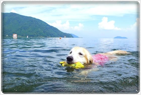 2017,7,22琵琶湖11