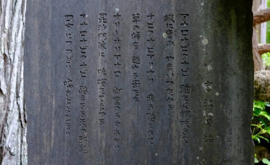 s-17年6月 24日 (21)