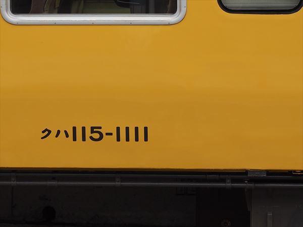 P7295788_R.jpg