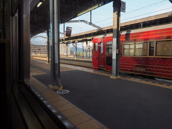 P7306613_R.jpg