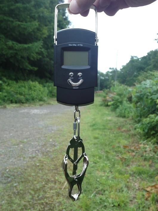 デジタル吊り下げ秤1