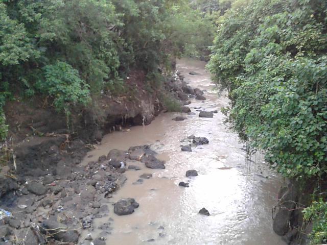 台風後の川