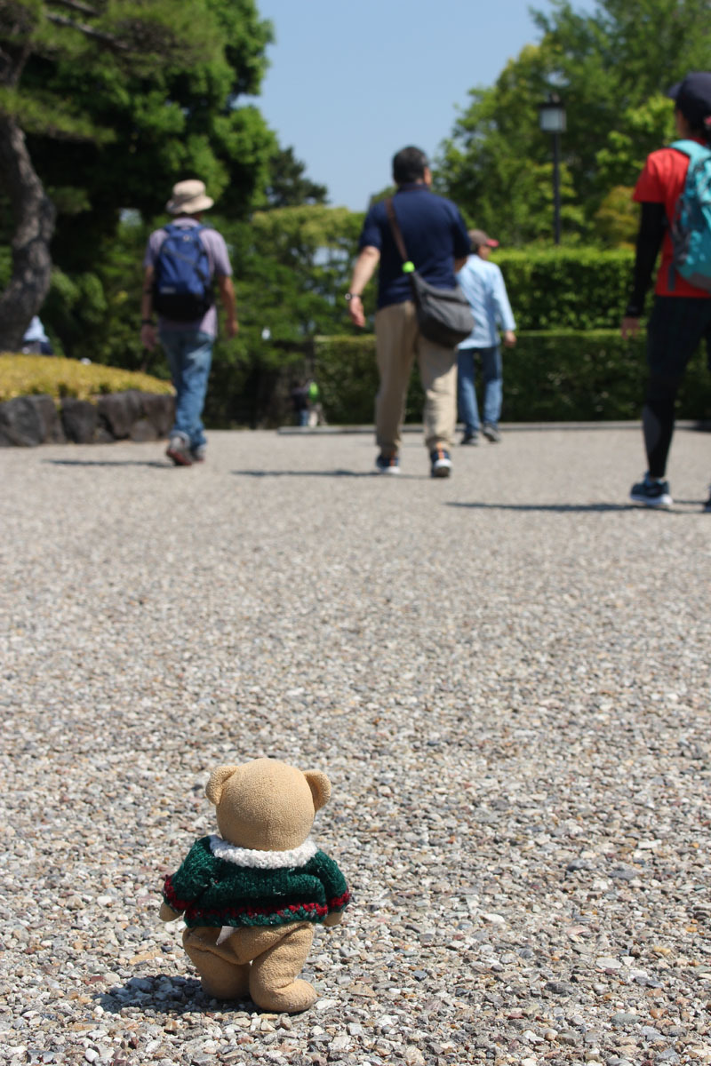 さわやかウォーキング 駿府城公園を歩く 紅葉山庭園前辺り 170520
