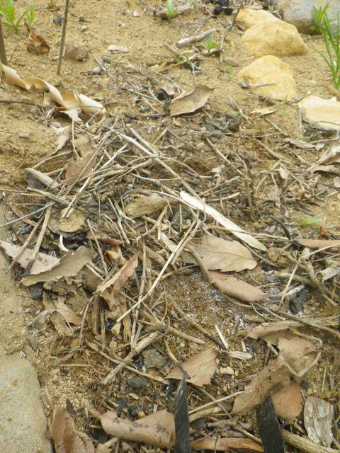 炭づくり・土台の木っ端