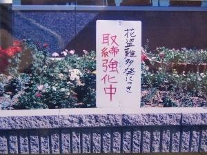 花ドロボー防止の看板