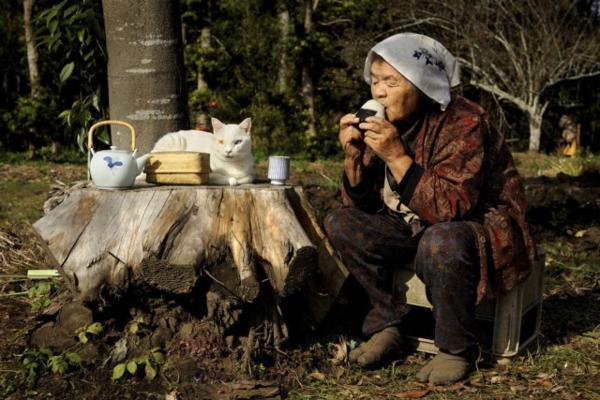 猫 おばあさん