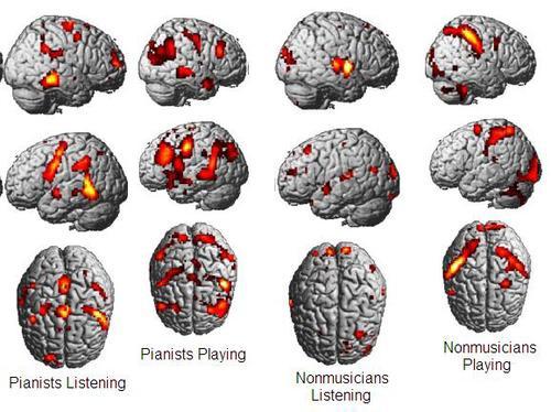 ピアニスト脳2