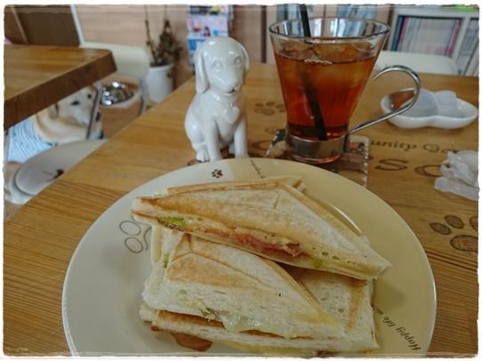 cafe11_2017090220061892e.jpg