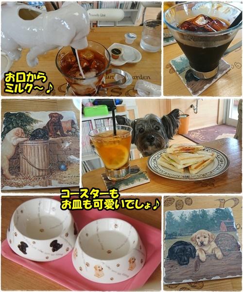 cafe12_20170902202034664.jpg