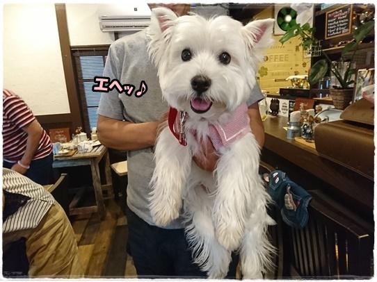 cafe17_20170831003831e80.jpg