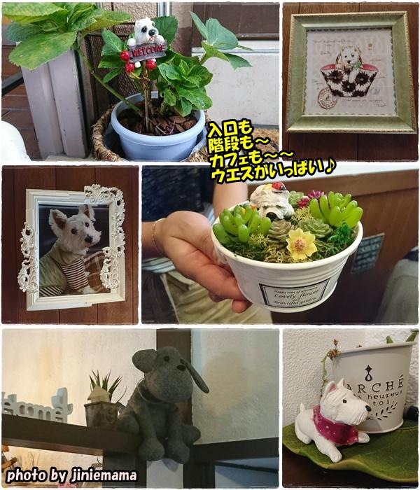 cafe1_201708302058267cd.jpg