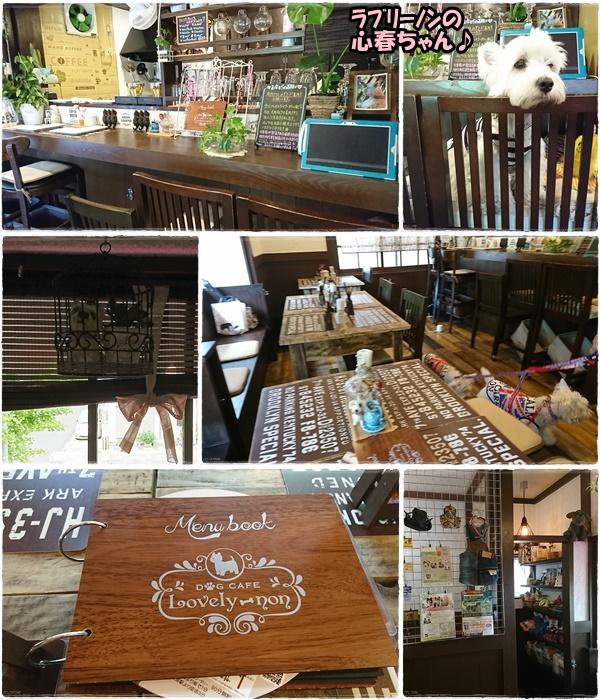 cafe2_20170821203812509.jpg