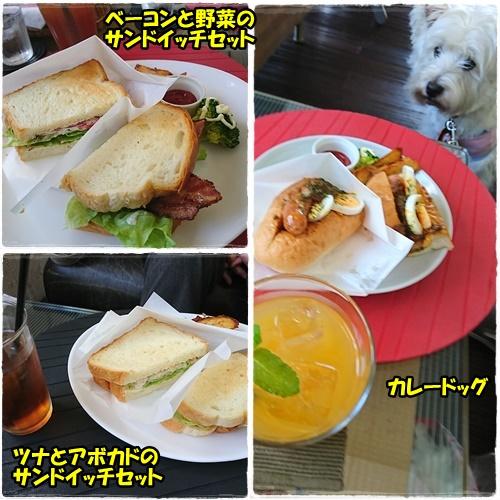 cafe3_2017052419234945b.jpg