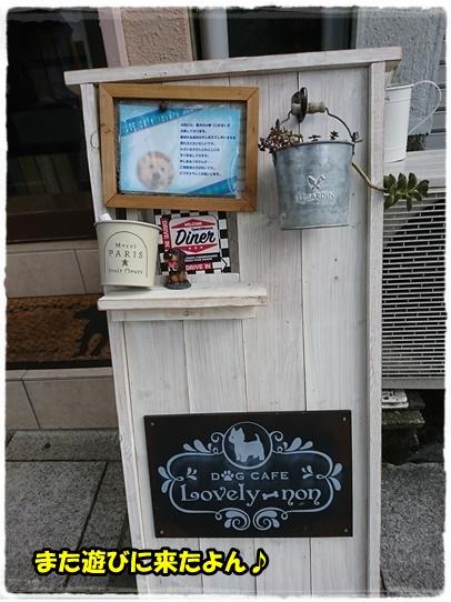 cafe_20170830205826298.jpg