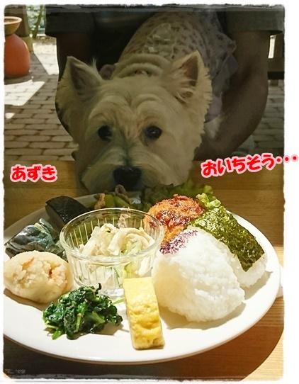 lunch3_20170618173052367.jpg