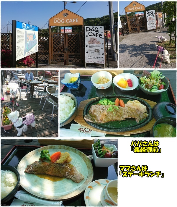 lunch_20170601234858b12.jpg