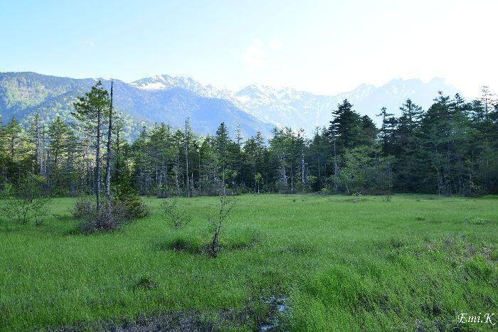 054-Emi-田代湿原