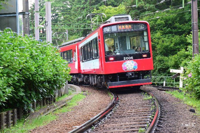 158-Emi-箱根あじさい電車