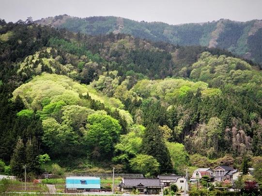 17.5.13-16 遠野② キヤノン  (112)