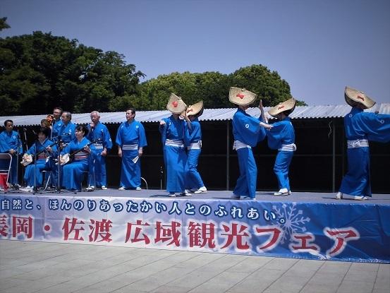 17.5.20 ・北浦和・上野・橋田先生宅 IMG9013 (20)